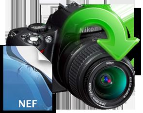 nikon-nef-files